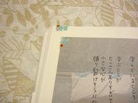 CIMG5941_copy.jpg