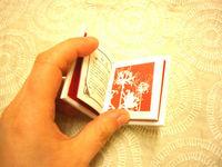 CIMG5896_copy.jpg