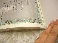CIMG5942_copy.jpg